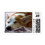 His Rightful Place Postage Stamp