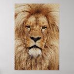 His Royal Highness Print