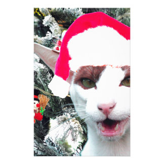 Hissing Cat in a Santa Hat Stationery