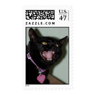 Hissy Missy Postage Stamp