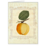 Histoire of an Apple - Shabby Chic Greeting Card