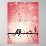 Historia de los pájaros del amor posters
