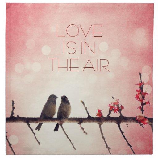 Historia de los pájaros del amor servilletas