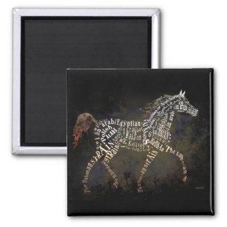 Historia de los regalos del caballo y de los casos imán cuadrado