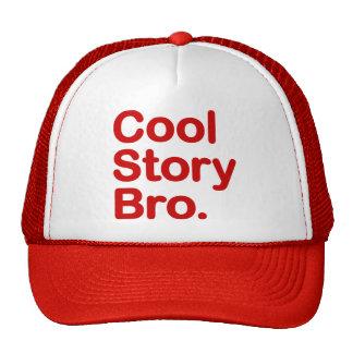 Historia fresca Bro. Gorra