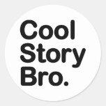 Historia fresca Bro. Pegatina