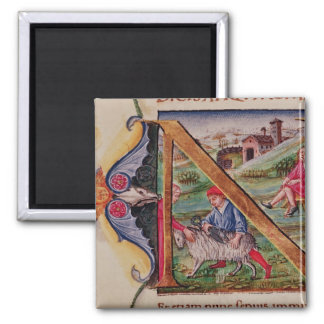 Historiated initial 'N' depicting sheep 2 Inch Square Magnet