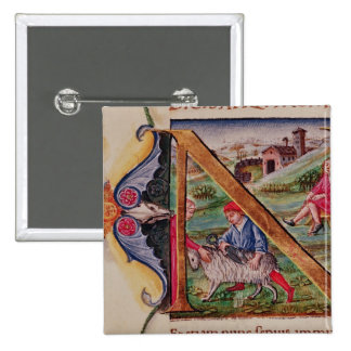 Historiated initial 'N' depicting sheep Pinback Button