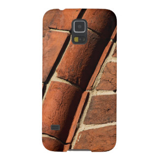 Historic Brick Architectural Detail Galaxy S5 Case