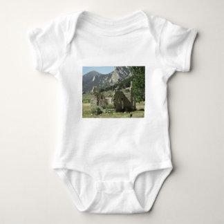 Historic Cabin T-shirt