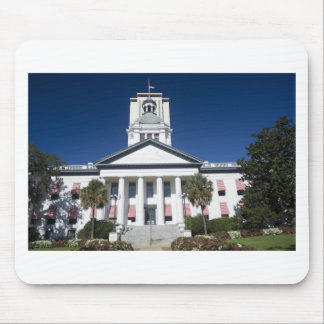 historic capital building mouse pad