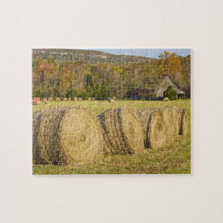 Historic farm in the Buffalo National River, Jigsaw Puzzle