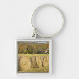 Historic farm in the Buffalo National River, Keychains