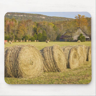 Historic farm in the Buffalo National River, Mouse Pad