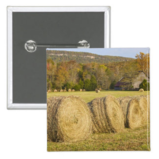 Historic farm in the Buffalo National River, Pinback Button