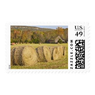 Historic farm in the Buffalo National River, Stamps