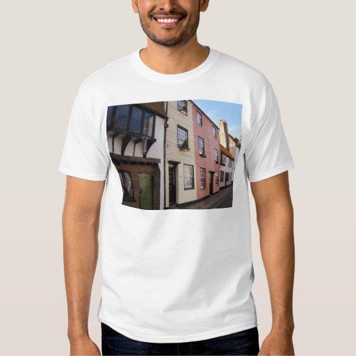 Historic Houses T-Shirt