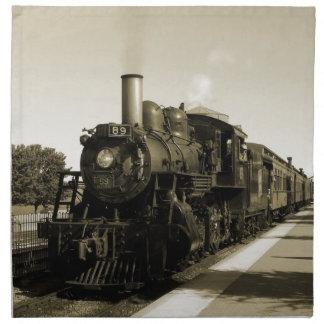Historic Railroad Cloth Napkin