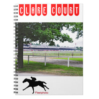 Historic Saratoga and Clare Court Notebook
