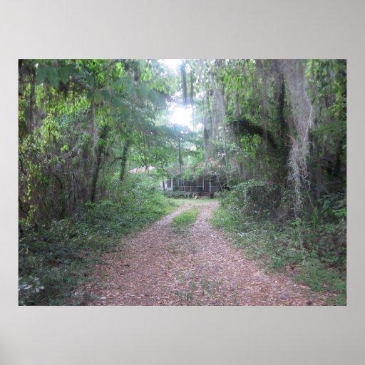 Historic Suwannee Springs, Florida suwannee river, Poster