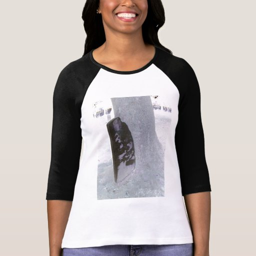 History Engulfed Shirts for Men, Women, Children