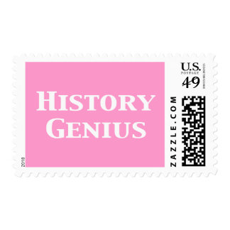 History Genius Gifts Stamp