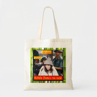 HISTORY LESSON FOR YOUNG AMERICANS BAG
