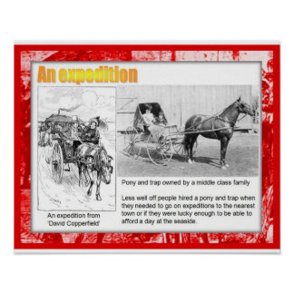 History, Literature, Dickens,An expedition Poster