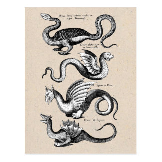 History of Dragons Postcard