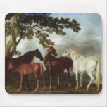 HISTORY of the HORSE Collection Mouse Pad