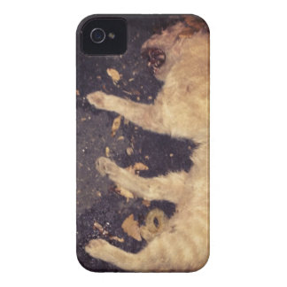 Hit That iPhone 4 Case-Mate Case