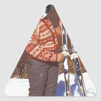 Hit The Slopes Triangle Stickers