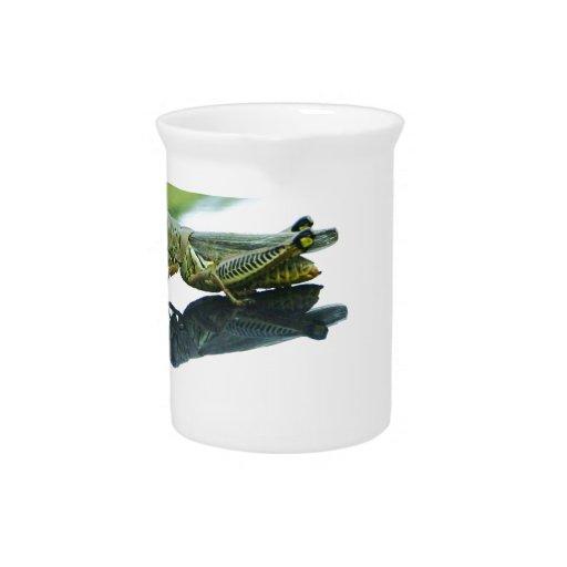 hitch hiking grasshopper beverage pitcher