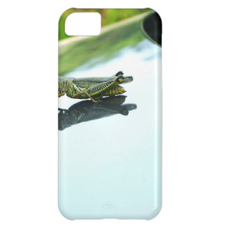 hitch hiking grasshopper iPhone 5C case
