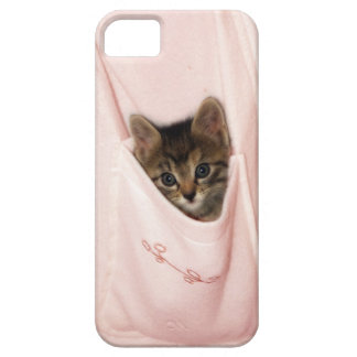 Hitchhiking iPhone 5 Covers