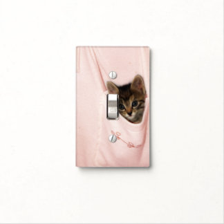 Hitchhiking Light Switch Cover