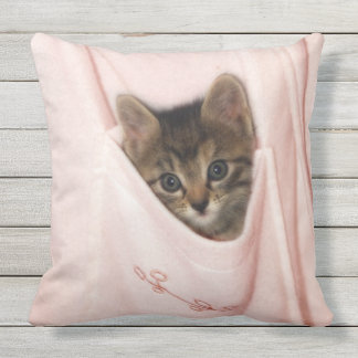 Hitchhiking Outdoor Pillow