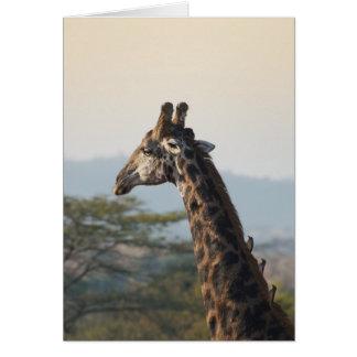 Hitching a ride on a giraffe card
