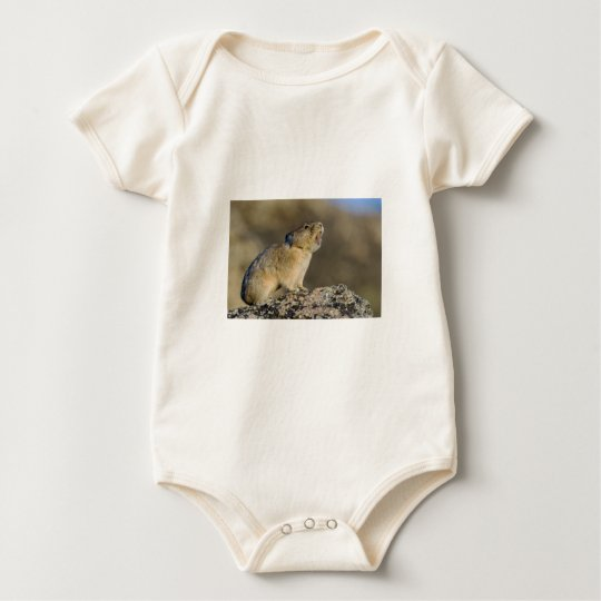 Hitting the High Note! Baby Bodysuit