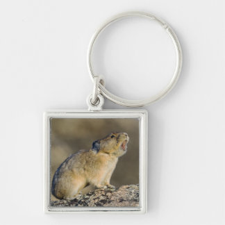 Hitting the High Note! Keychain