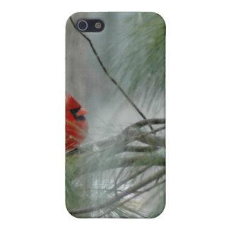 Hivernal, caso del iPhone del pájaro iPhone 5 Fundas