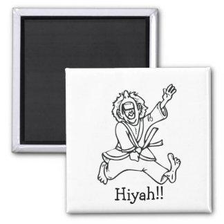 ¡Hiyah!! Imán Cuadrado