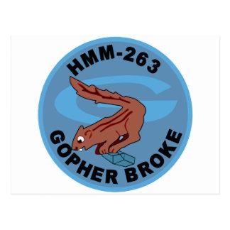 HMM-263 Thunderchickens Postcard