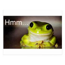 Hmm Frog Postcard