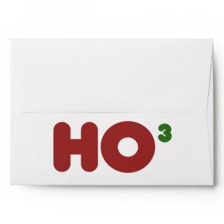 Ho 3 Nerdy funny christmas Envelopes