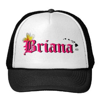 ¡Ho Brah! ¡…, el SID es el gorra de Briana!!!