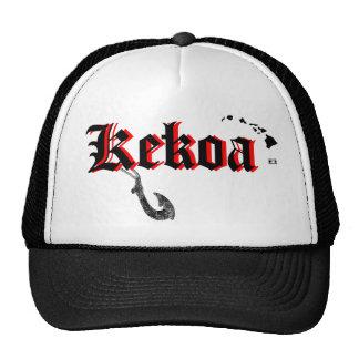 ¡Ho Brah! ….¡, El SID es el gorra de Kekoa!!!