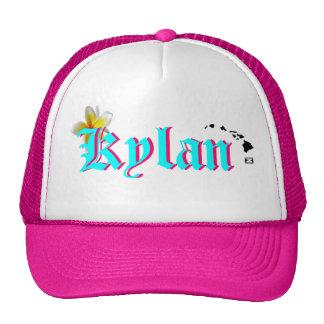 ¡Ho Brah! ¡…, el SID es el gorra de Kylan!!!