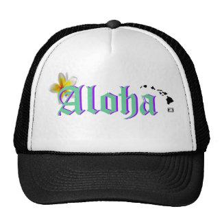 ¡Ho Brah! ¡…, el SID es el gorra de la hawaiana!!!