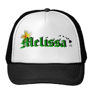 ¡Ho Brah! ¡…, el SID es el gorra de Melissa!!!